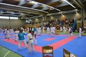 2015 / Oberbayerische Meisterschaft in Ingolstadt_5